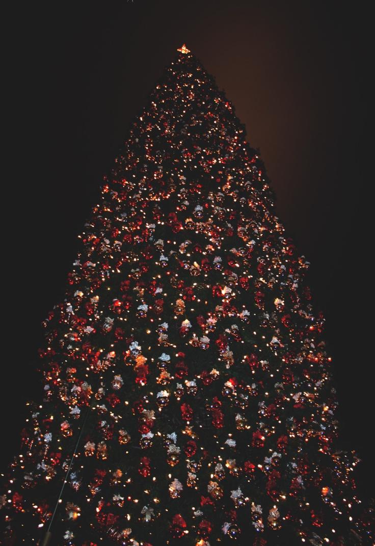 americana at brand christmas tree lighting celebration - Celebration Christmas Lights