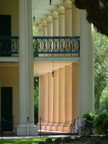 Oak Alley Plantation>The grand oaks lining the walkway to the house are so huge they are almost surreal
