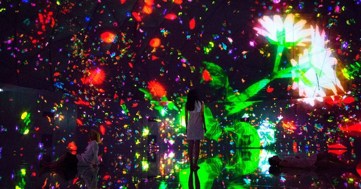 Floating in the Falling Universe of Flowers | DMM.PLANETS Art by teamLab | July 16 - August 31, 2016