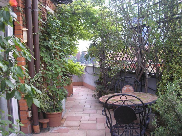 7 best terrazze arredate images on pinterest decks for Terrazze arredate con piante
