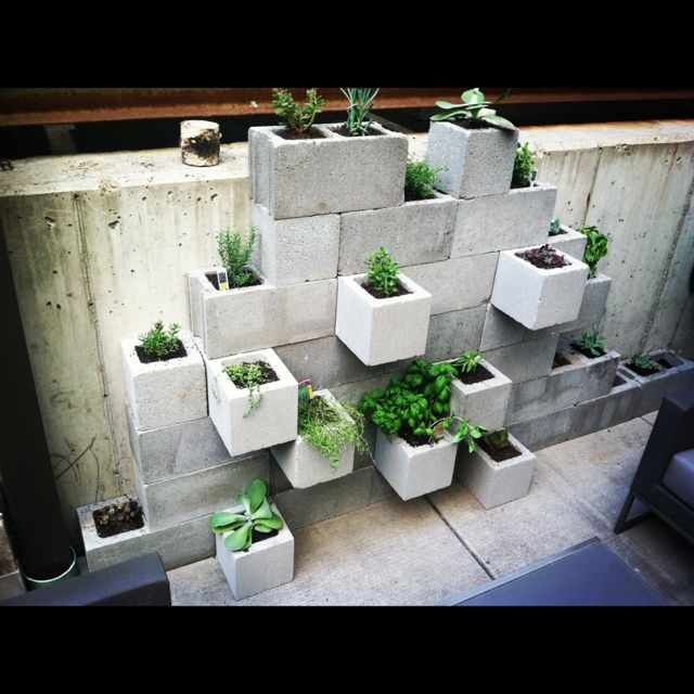 Urban Herb Garden Ideas Part - 15: Urban Herb Garden - With Cinder Blocks