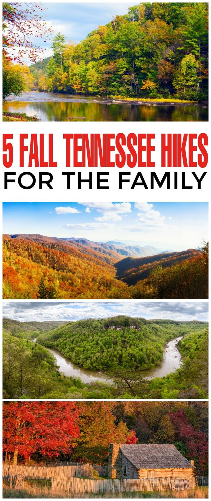 Hiking is one of the main activities in the state of Tennessee, with national…