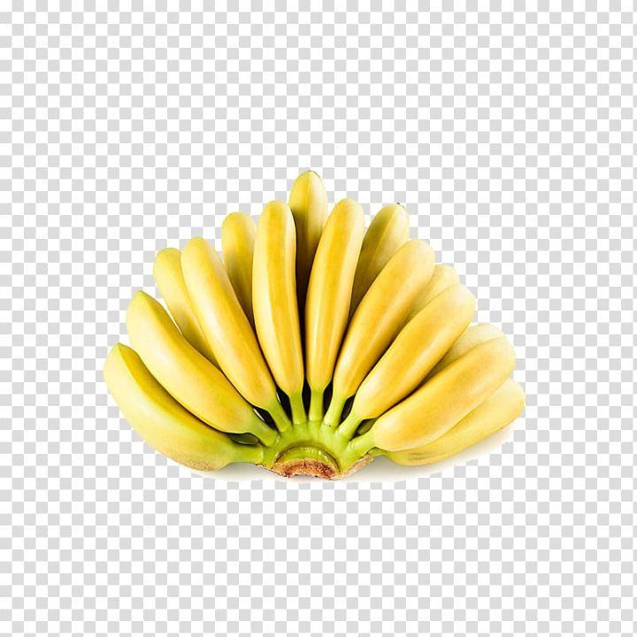 Ecuador Lady Finger Banana Fruit Banana Peel A Banana Transparent Background Png Clipart Banana Fruit Banana Fruit