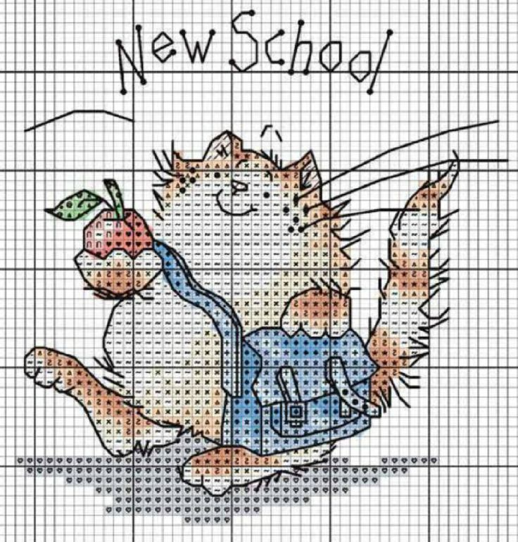 MS - Cat, new school