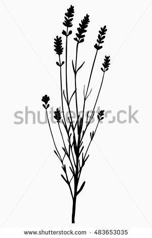 Bunch, sprig of lavender flower - black silhouette - illustration
