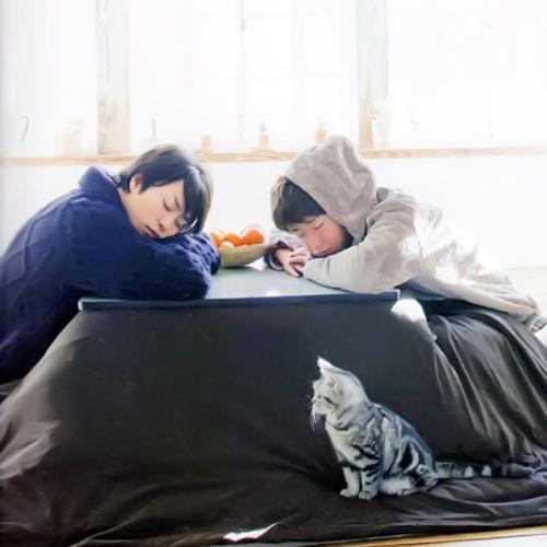 刺激女生母性本能的日本男星 好想偷偷摸摸頭~ヾ(_^* )