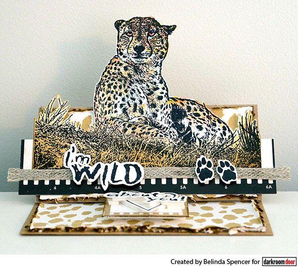 Pop up card by Belinda Spencer using Darkroom Door Wild Africa Vol 2 Rubber Stamp Set and Cheetah Background Stamp