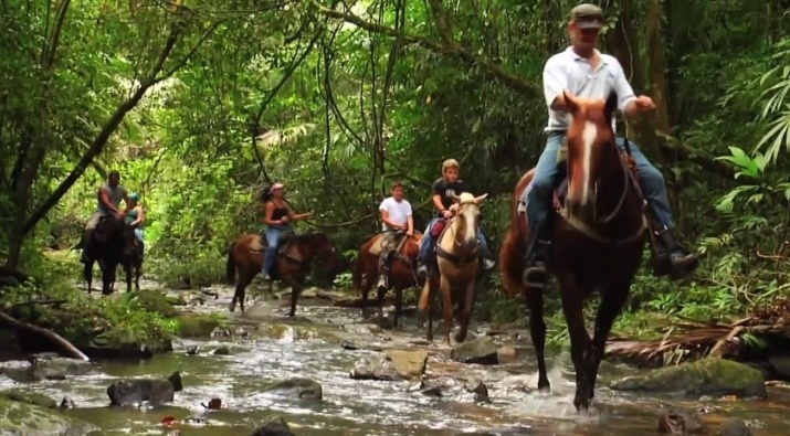 "Mountain Equestrian Trails in ""Adventuring in Belize ..."
