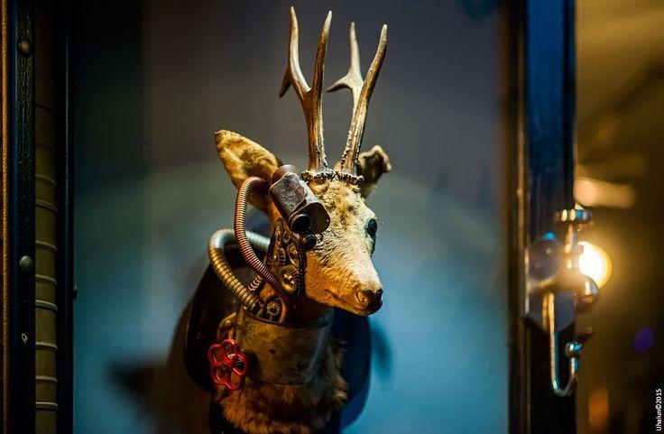 Deer by Vladimir Popov / Uhaiun on 500px