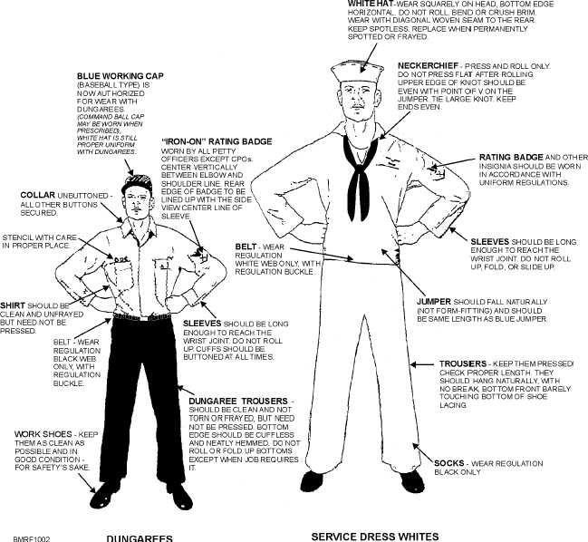 Navy dress blue patch regulations