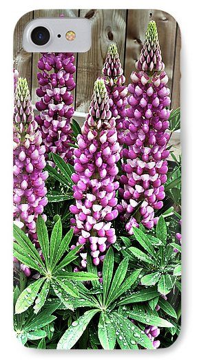 Spring Freshness  Phone Case for Sale by Leslie Montgomery.