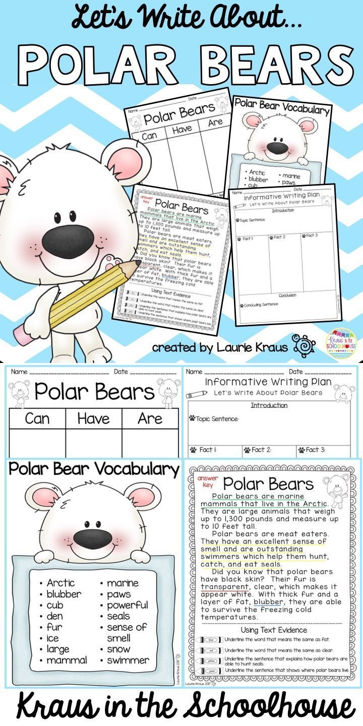 Are you teaching your students about polar bears? This product includes reading and writing activities to help students learn all about these Arctic marine mammals. Students will learn new vocabulary words, identify text evidence, use graphic organizers, plan and write informative essay, and choose a variety of paper to display their thoughts and ideas.