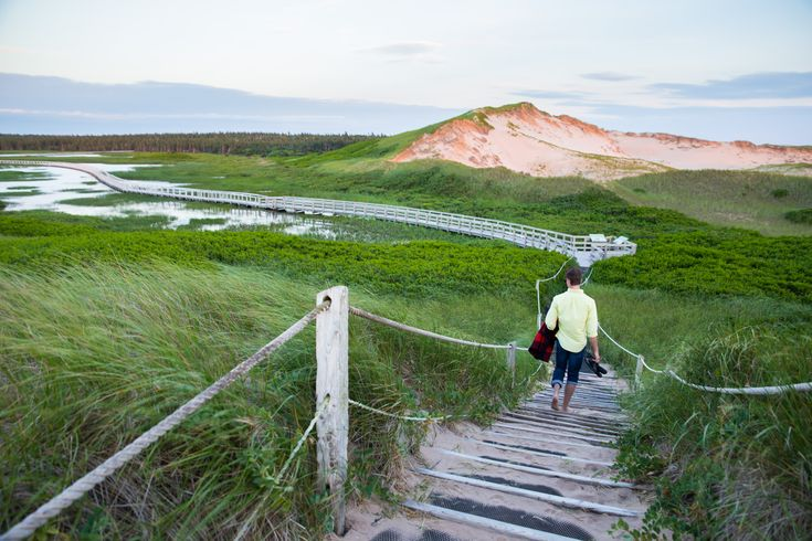 8 Things You Didn't Know You Wanted to See in PEI (Until now!)
