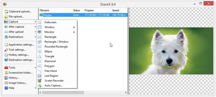 Free Screen Capture Tool With Premium Features