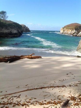 Photos of Point Lobos State Reserve, Carmel - Attraction Images - TripAdvisor