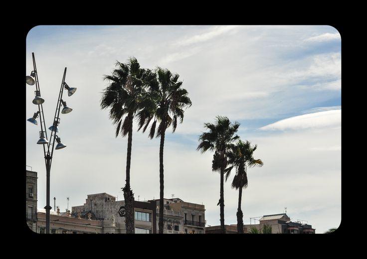 Barcelona samuel inderbitzi unscharf fotografie bern switzerland