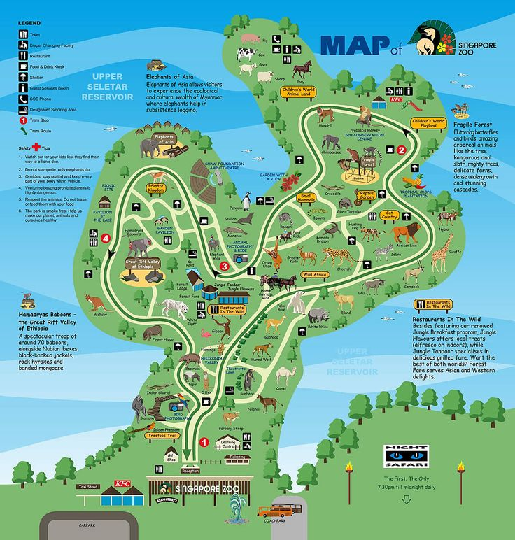 Best Zoos Images On Pinterest Zoos Aquariums And Map Design - Houston zoo map