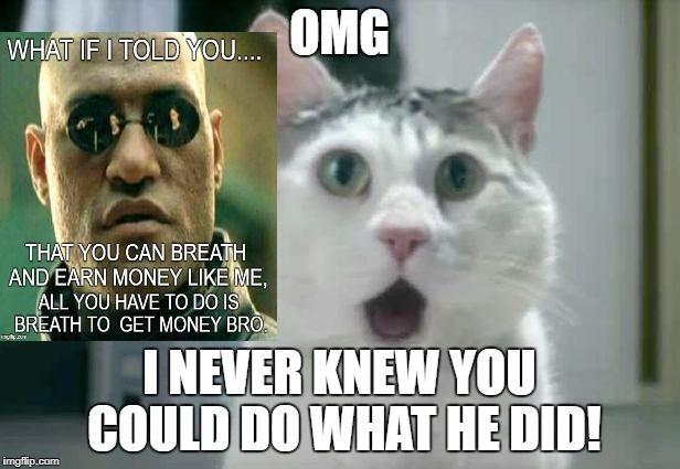 omg omg omg cat ; kitty cute lol ; is this you, ya it is