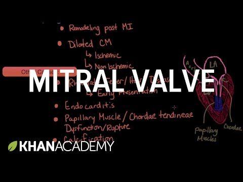 Mitral valve regurgitation and mitral valve prolapse | NCLEX-RN | Khan Academy - YouTube