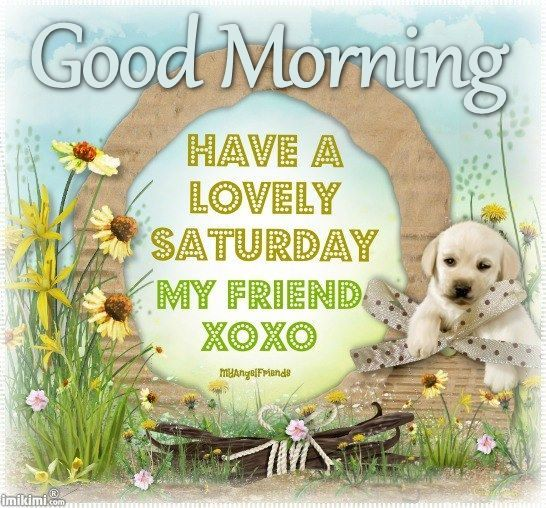 Positive Saturday Morning Quotes: Best 25+ Good Morning Happy Saturday Ideas On Pinterest