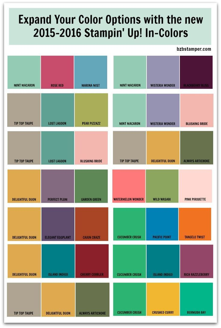 The new 2015-2016 Stampin' Up! In-Colors are so fresh & trendy! Expand your color options by combining them with our current exclusive color families -- here are a few suggestions to get you started!
