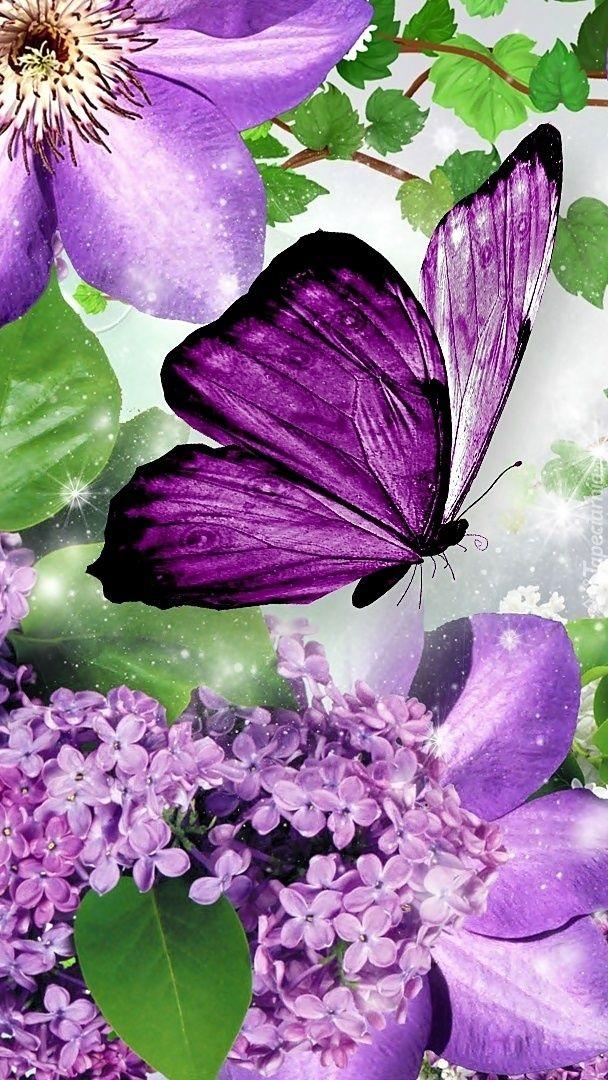 Tapeta Na Telefon Motyl Siadajacy Na Powojniku Posrod Bzu Dodana Do Kategorii Motyle Clematis Bez Butterfly Wallpaper Butterfly Watercolor Butterfly Painting