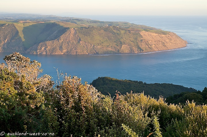 Huia - This was the view towards Southwest when we were up on Mt Donald McLean recently. The soft light of the evening envelops the southern shores of the entrance to the Manukau Harbour, with the lighthouse on top of the Manukau Heads faintly visible on the ridge.