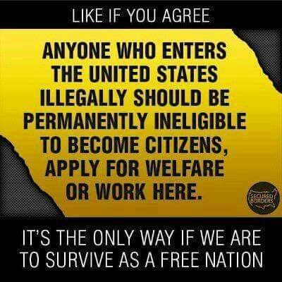 Illegal immigrants should never be eligible for welfare