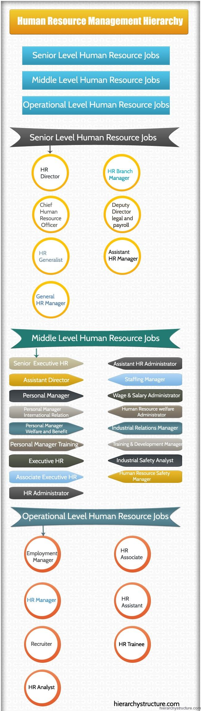 best images about career pathways and exploration resources on human resource management hierarchy from hierarchystructure com