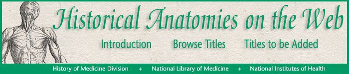 Historical Anatomies (illustrations) Images have been selected from the following anatomical atlases in the National Library of Medicine