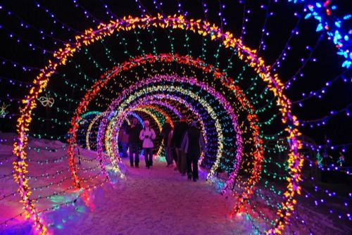 Green Bay Garden Of Lights 19 Best Green Bay Botanical Gardens Festival Of Lights Images On