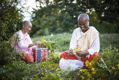 How to Be Content, and Why That's Important: Buddhist nuns picking flowers.