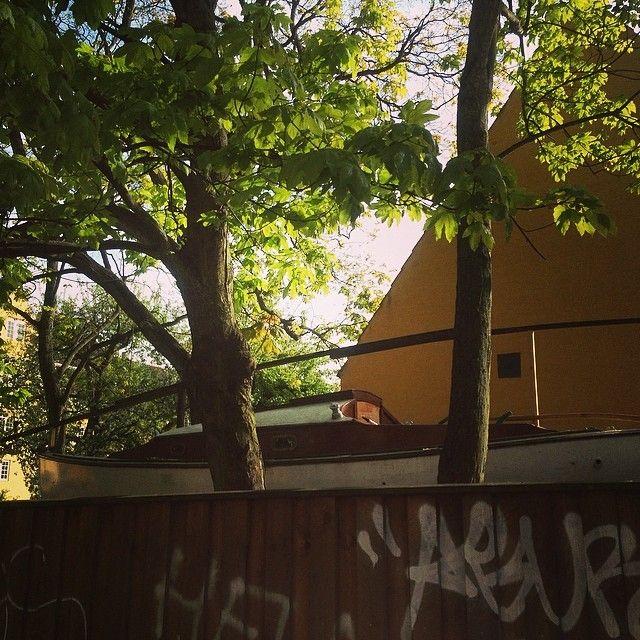 #noah, is that you waiting for the flood? #copenhagenfavorites #cph #kbh #københavn #voreskbh #sharingcph #deldinby #delditkbh #copenhagenize #kigopkbh #indreby #staden #photooftheday #bestoftheday www.toursincopenhagen.com