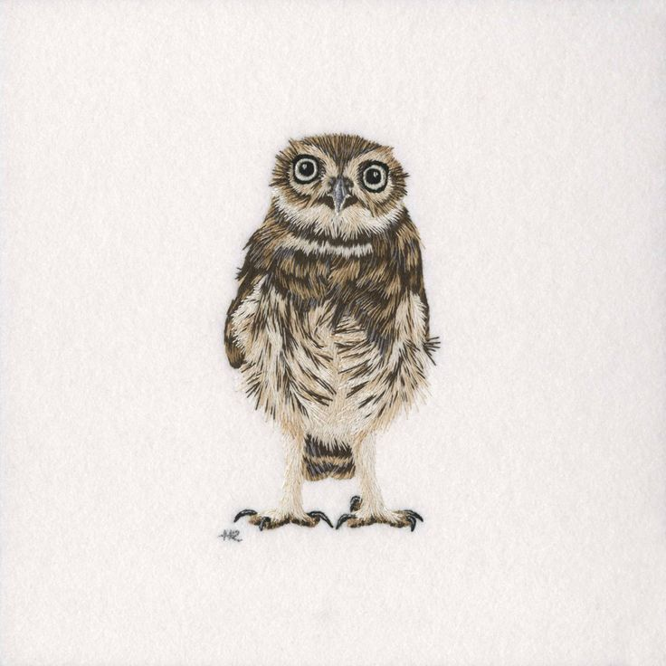 Little Owl Original Hand Embroidery – The Bluebird Embroidery Company