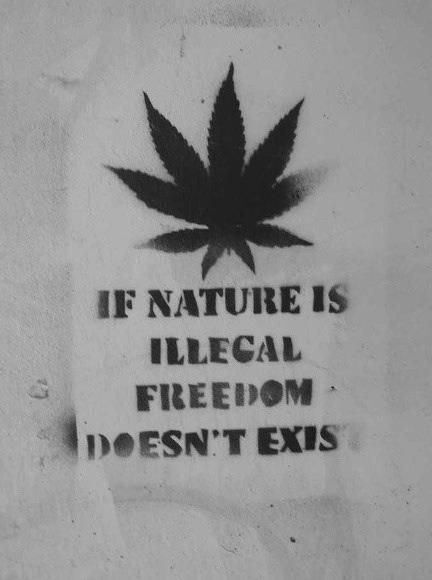 #legalizenature