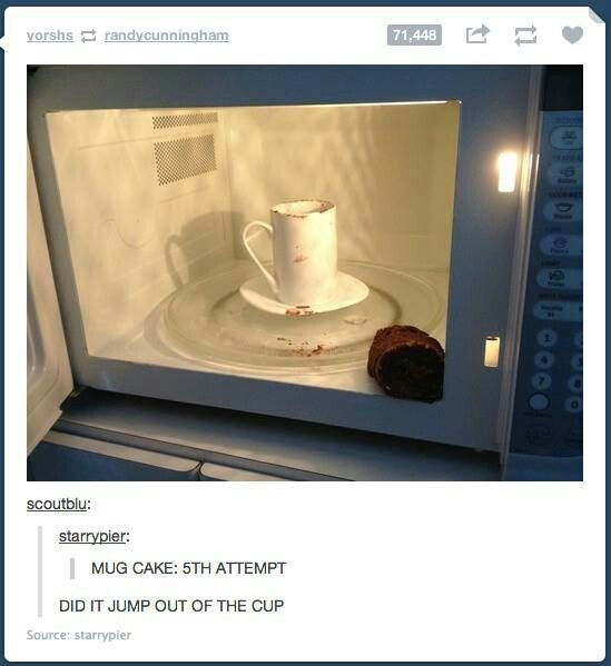 Mug cake fail