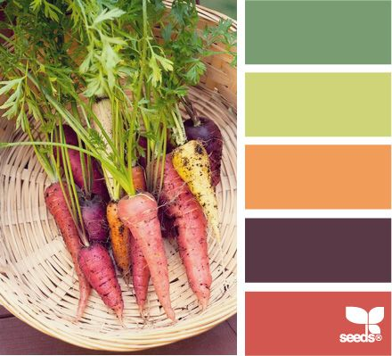 carrot colorColourfrom Design, Colors Combos, Carrots Colourfrom, Fun Recipe, Carrots Colors, Colors Designseeds, Design Seeds, Colors Palettes, Carrots Colours From