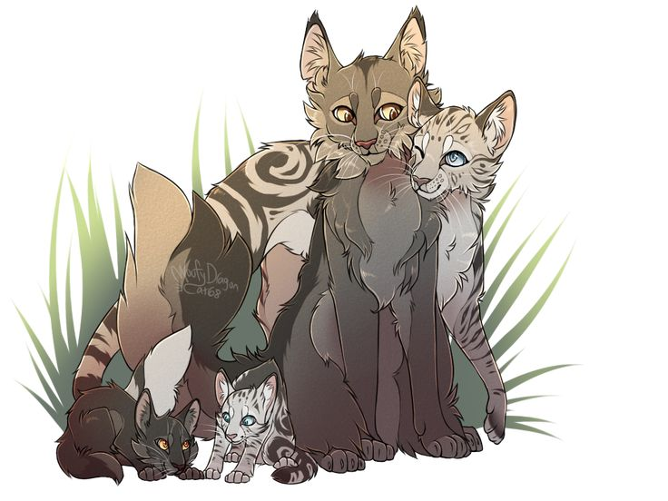 I haven't drawn any warrior cats in some time, so I decided to draw a pair today (it took more hours than I would imagine x-x) This is what the family would look like if they were all, uhm, alive a...