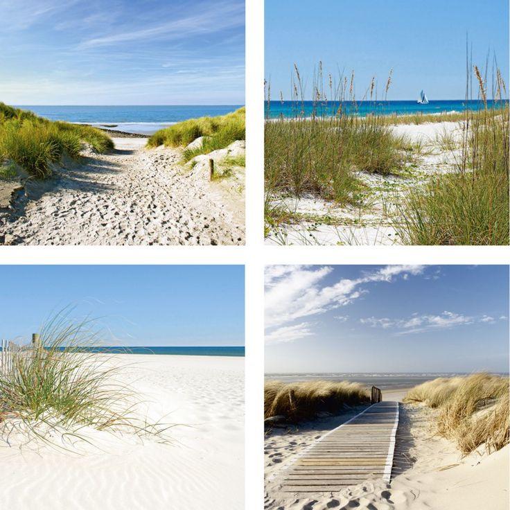 Ivonnewierink. Casey. Gruendemann: Strand und Sanddünen. Sanddünen und Seegräser. Sanddüne und schöner Zaun. Nordseestrand - Glasbild Glasbilder