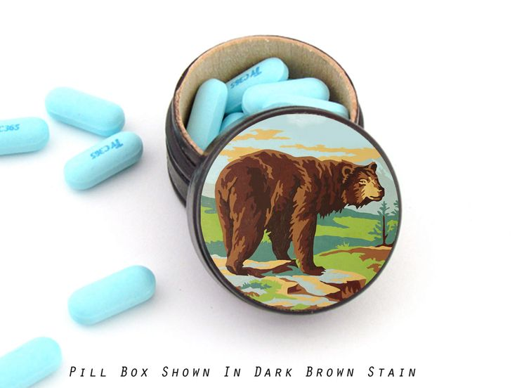 Paint by Numbers Bear Pill Box - Bear Non Toxic Vitamin Box - Bear Wedding Ring Box - Masculine Ring Box by WalterSilva on Etsy
