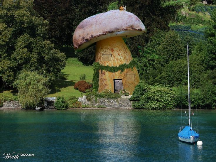 lakefront  mushroom house