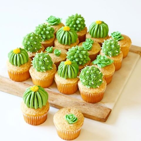 "Cactus Cupcakes | Country Living (@countrylivingmag) on Instagram: ""Cutest. Cupcakes. Ever.  #CLkitchen #instafood #regram @alanajonesmann"""