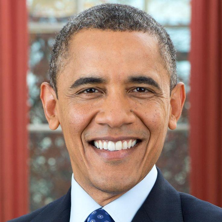 25 best ideas about barack obama bio on pinterest