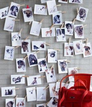 Fotowand Ideen 10 besten idee für eine fotowand bilder auf deko ideen
