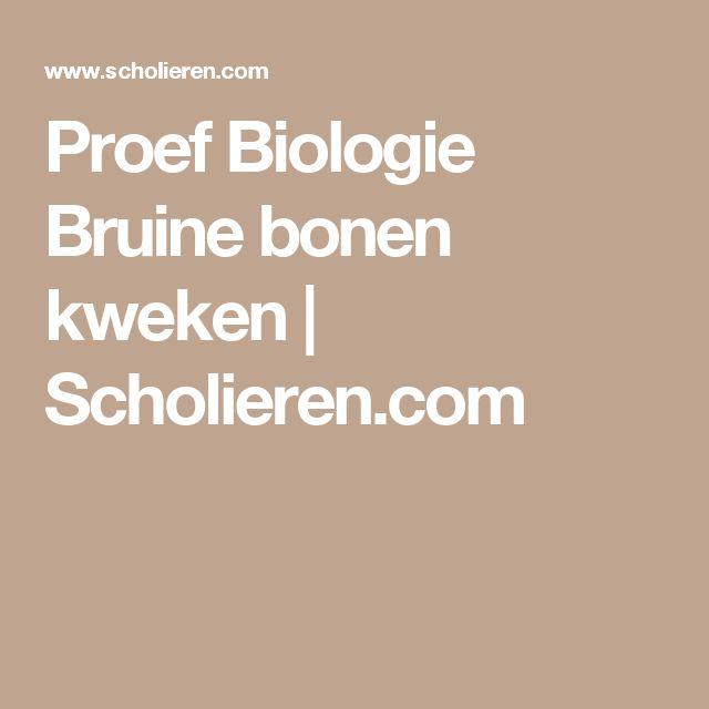 Proef Biologie Bruine bonen kweken   Scholieren.com