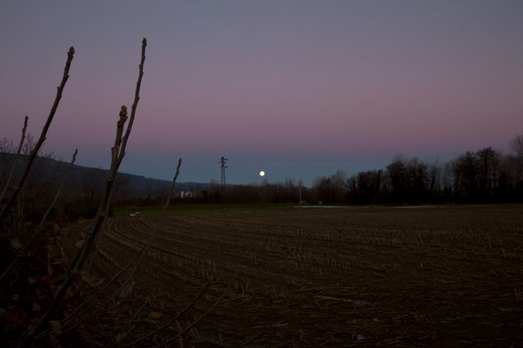 Moon Dot