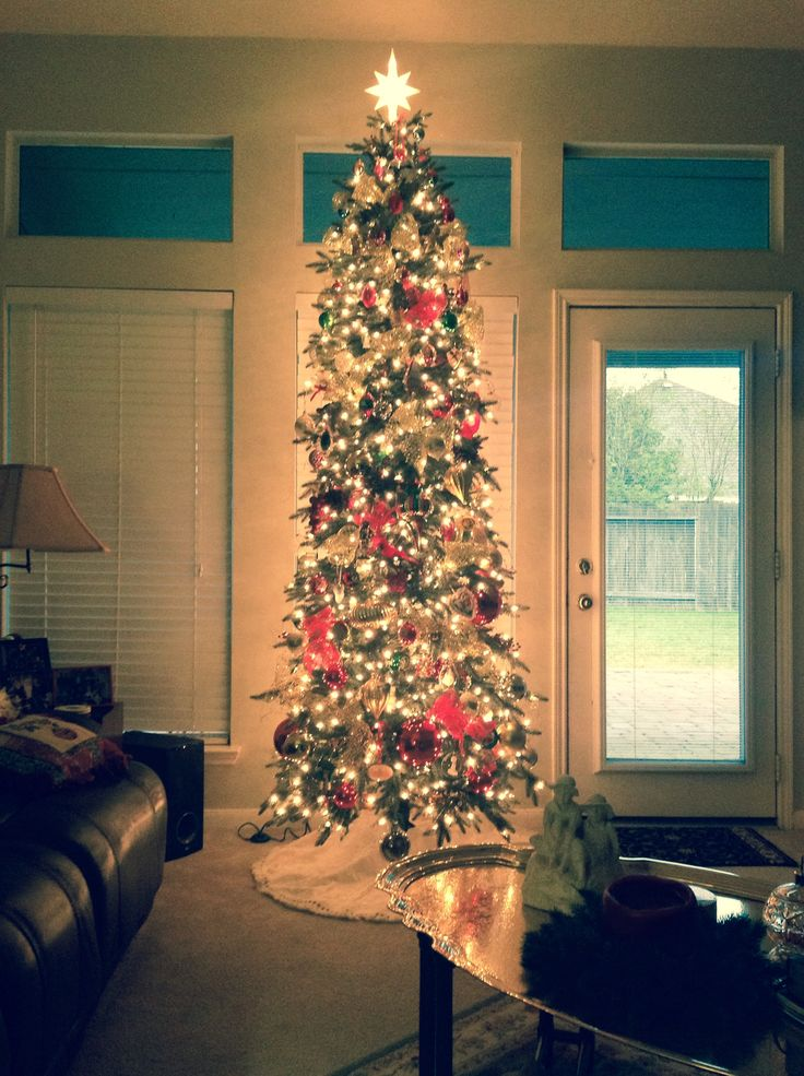 25 b sta narrow christmas tree id erna p pinterest jul for Skinny trees for tight spaces