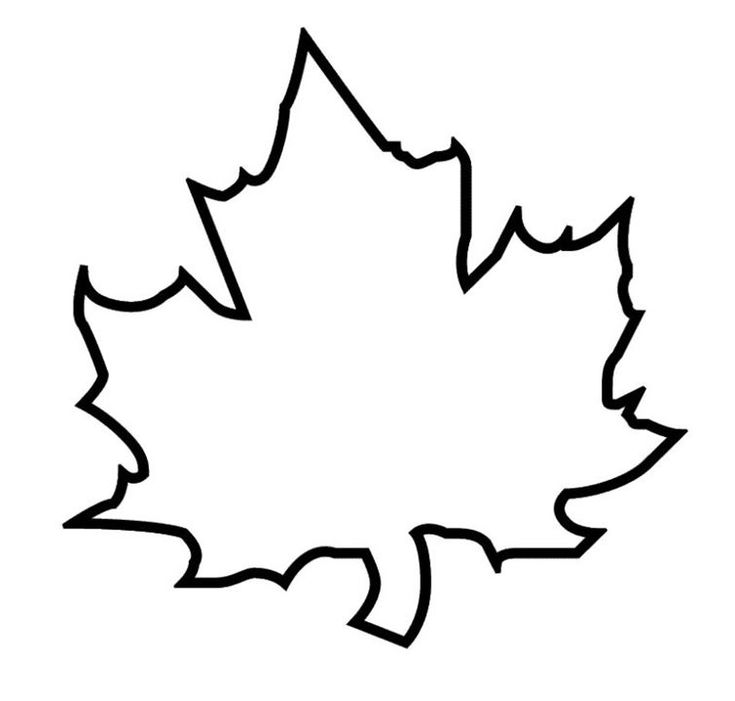 The 25+ best Leaf outline ideas on Pinterest Leaf template - leaf template for writing