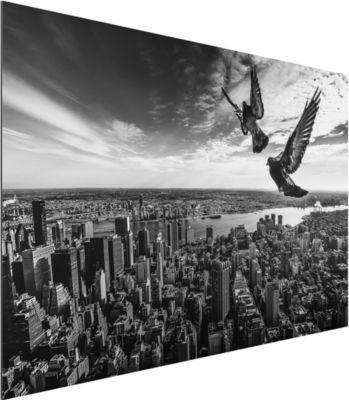 Alu Dibond Bild - Tauben auf dem Empire State Building - Quer 2:3 50x75-22.00-PP-ADB-WH Jetzt bestellen unter: https://moebel.ladendirekt.de/dekoration/bilder-und-rahmen/bilder/?uid=a61f9e22-de45-572d-ad33-03635e6e6fd1&utm_source=pinterest&utm_medium=pin&utm_campaign=boards #heim #bilder #rahmen #dekoration