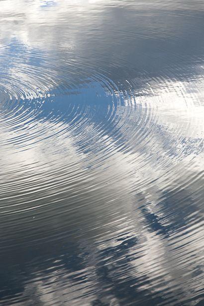 雨上がりの佐鳴湖、 細くて規則正しい波紋が美しい。  今月の20日、 北岸ではミニ鉄道乗車などのイ...